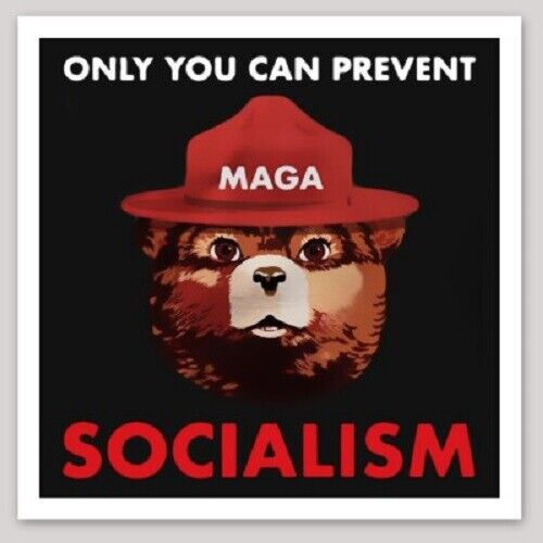 """ANTI-SOCIALISM BUMPER STICKER DECAL """"ONLY YOU CAN PREVENT SOCIALISM"""" TRUMP 2020"""