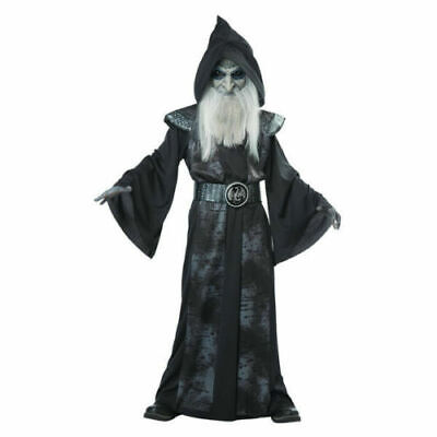 Boys Wizard Costume (Wicked Wizard Boys Costume Totally Ghoul Child Hooded Robe LARGE ages 8 - 14)