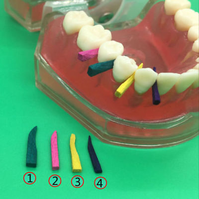 100pcs Dental Contoured Wooden Wedges Interdental Disposable 6 Colors 111416mm