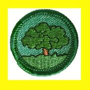 1950 Girl Scout Badges