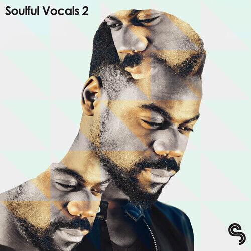Sample Magic Soulful Vocals 2