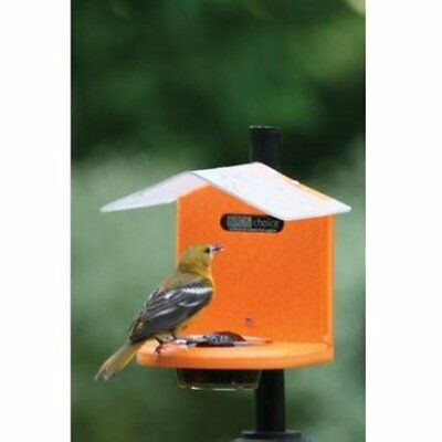 Birds Choice Pole-Mounted Jelly Feeder Bird Feeder SNJF