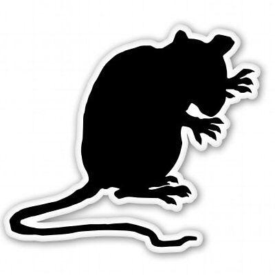 Evil Rat - Rat Evil Car Vinyl Sticker - SELECT SIZE