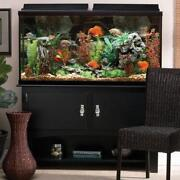 Used Fish Tanks