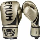 Boxing Gloves with Custom Bundle