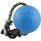 Jolly Pets Rubber Dog Toys
