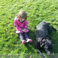Nanny Wanted - Looking for a Part Time Nanny