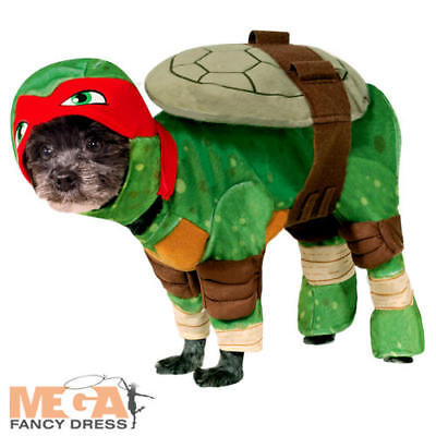 Teenage Mutant Ninja Turtle Raphael Dog Fancy Dress TMNT Superhero Pet Costume - Teenage Mutant Ninja Turtle Kostüm Hunde
