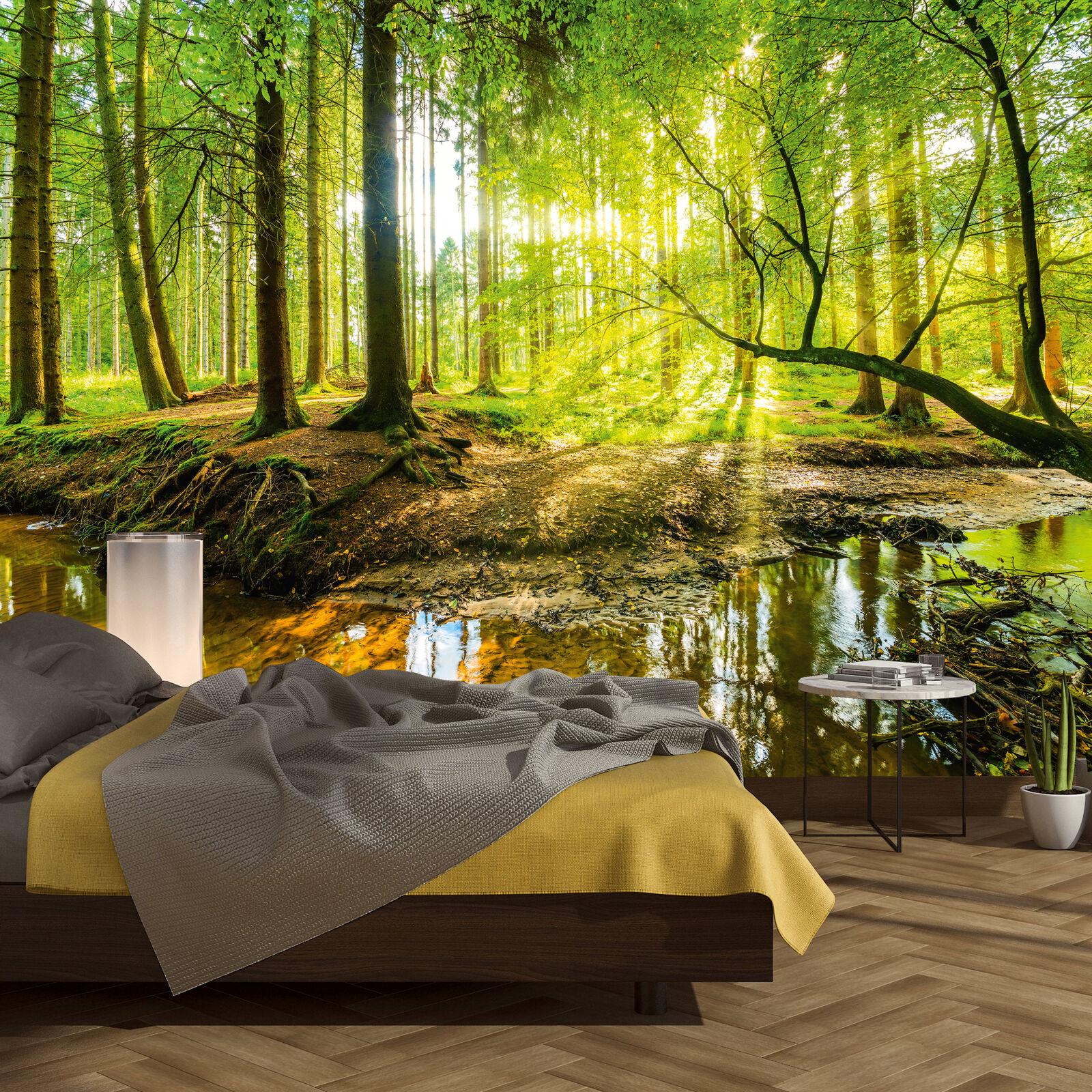 Carta da Parati Foresta 366 x 254 cm Legno Alberi Luce solare fotomurali