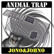 Cat Possum Traps