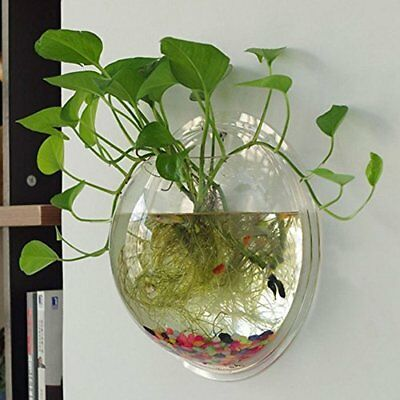 Acrylic Hanging Wall Mount Fish Tank Bowl Vase Aquarium Plant Pot Bubble Decor