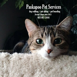 Pet Sitting services provided by a Certified Pet Sitter (NW)