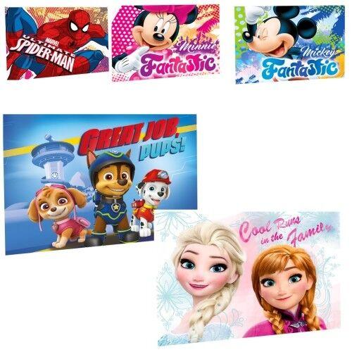 Disney Handtuch Gästehandtuch Waschlappen Kinder 30 x 40 cm Frozen Paw Patrol