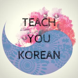 Teach You Korean (TYK), 1 on 1 Tutoring for all levels!