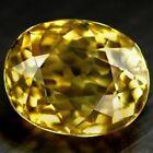 Yellow Yellow Loose Zircons