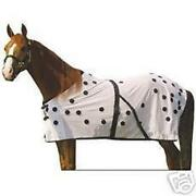 Horse Magnetic Therapy
