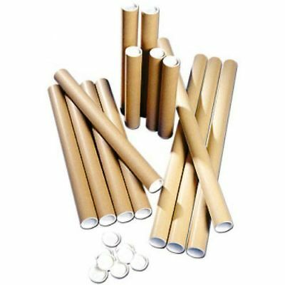 1  Postal Tubes Extra Strong Quality Cardboard A3 335MM X 51MM+Plastic End Caps