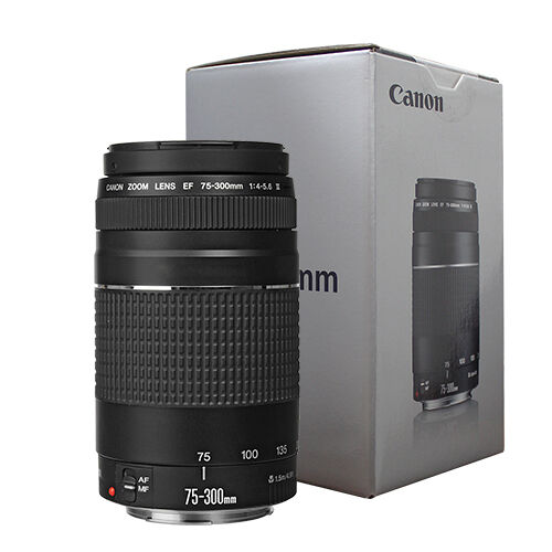 Canon EF 75-300mm f/4-5.6 III Telephoto Zoom Lens for Canon SLR Cameras -   10 - Canon EF 75-300mm f/4-5.6 III Telephoto Zoom Lens for Canon SLR Cameras