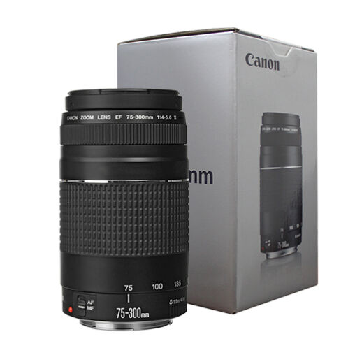 Canon EF 75-300mm f/4-5.6 III Telephoto Zoom Lens for Canon SLR Cameras -   84 - Canon EF 75-300mm f/4-5.6 III Telephoto Zoom Lens for Canon SLR Cameras