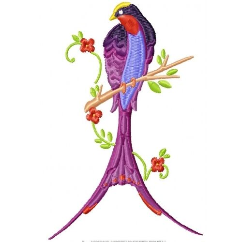 Embroidered Sweatshirt - Beautiful Birds PE18