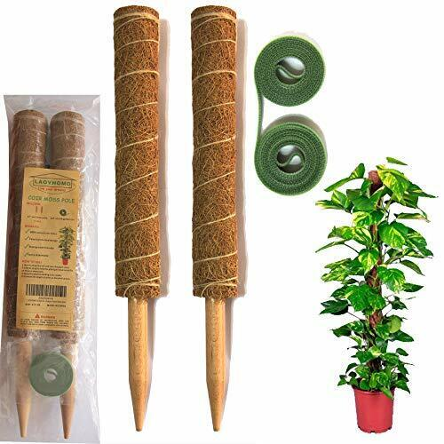 34 Inch Coir Moss Pole -2 Coco Sticks for Climbing Indoor Potted Plants, 0.8