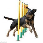 Weave Pole Dog Agility Training Supplies