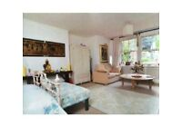 Beautiful spacious double studio/room overlooking a quiet garden