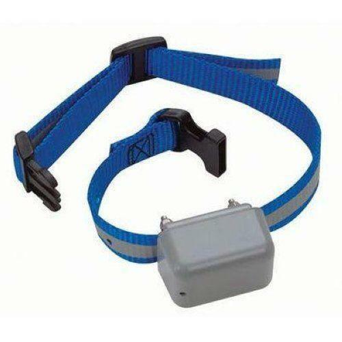 Innotek Sd  Dog Collar