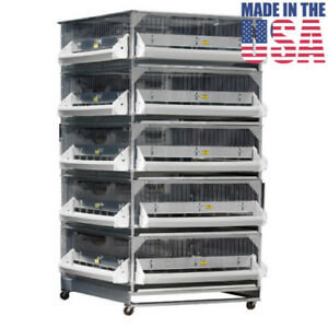 Brooder GQF Battery Brooder Deck Game Bird Poultry 5 Box Brooder 0540 Poultry
