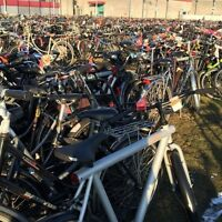 Looking for a lot of bikes