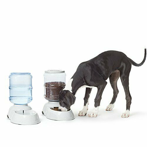 LARGE 2-in-1 Waterer and Feeder Gravity Pet Food Feeder and Water Dispensers