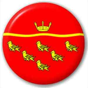 NEW-LAPEL-PIN-BUTTON-BADGE-East-Sussex-Flag
