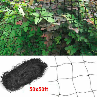 Protection Netting - 50' X 50' Bird Netting Chicken Protective Net Screen Poultry Garden Aviary Game
