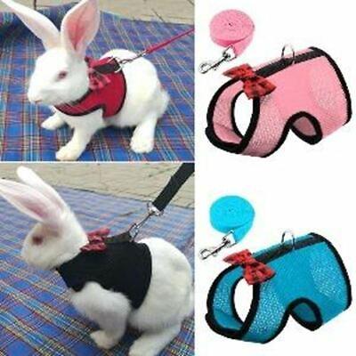 Mesh Rabbit Harness - CA$19.99