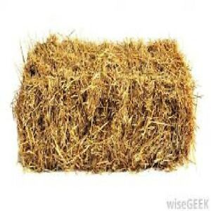 small straw bales for winter cover