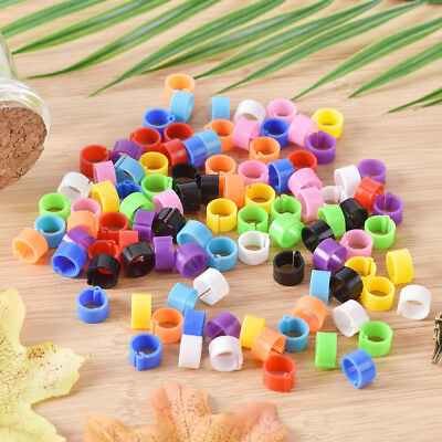 100x bird rings 8mm leg bands clip pigeon dove chicks duck bantam poultry  ii
