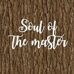 Soul of the master