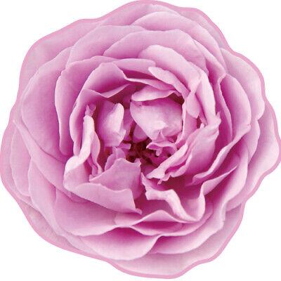 Pink Rose Flower Hand Towel Made in IMABARI JAPAN REALISTIC MOTIF TOWEL