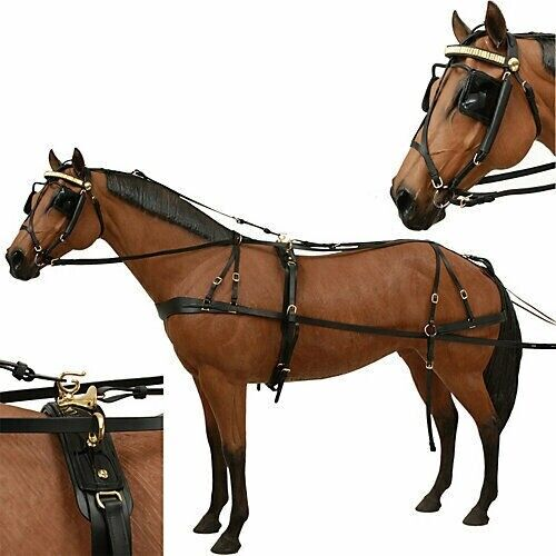 Horse Driving Harness - Premium Black Leather - Shadow - Horse Size Harness