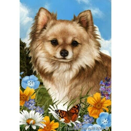 Summer House Flag - Longhaired Chihuahua 18145