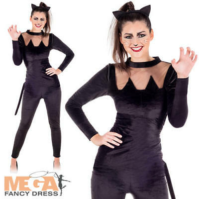 Black Cat Ladies Fancy Dress Witches Kitty Adult Halloween Animal Costume - Ladies Cat Outfit Halloween