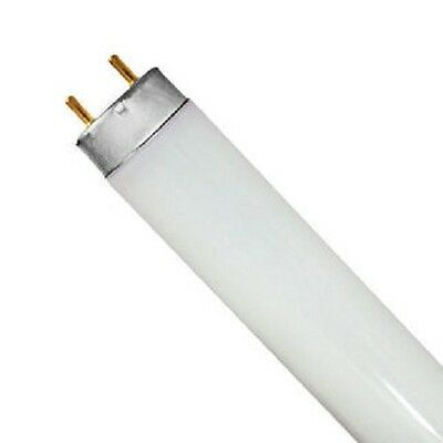 Eiko F15T8/D 15W Daylight Bi-Pin T8 Fluorescent Lamp Light Bulb 15832