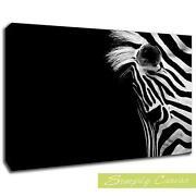 Zebra Print Canvas