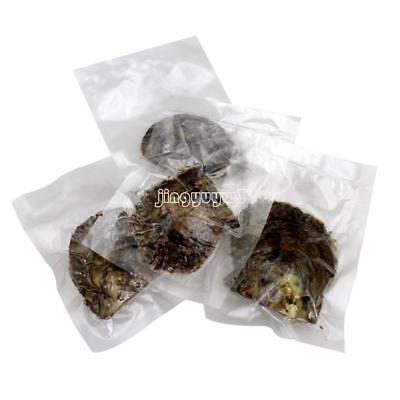 Wholesale 10PCs 7-8mm Mix Colors Natural Bulk Akoya Sea Pearls Oyster US STOCK