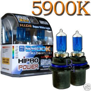 HID Xenon Halogen Light Bulbs Ford Windstar 1995-1998 1999 2000 2001 2002 2003