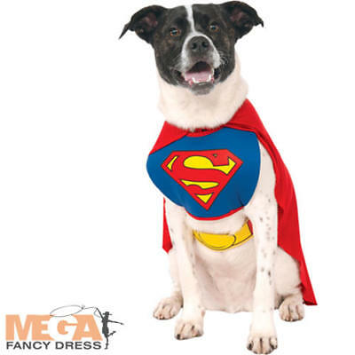 Superman Dog Fancy Dress Animal Superhero Halloween Pet Dogs Costume Outfit UK (Pet Halloween Costumes Uk)