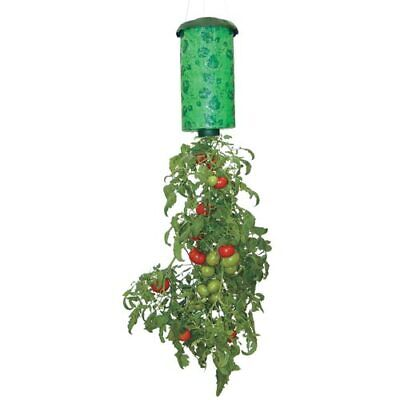 Upside Down Hanging Tomato Planter As Seen On TV Patio Balcony Porch Apartment