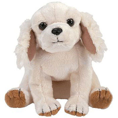 TY Beanie Baby - LAPTOP the Dog (6 inch) - MWMT's Stuffed Animal Toy