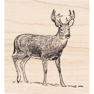 Buck In Snow Beeswax Rubber Stamp Mounted Deer Animals Wildlife Scenic Stamping