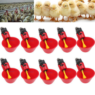 10 Pack Poultry Chicken Water Drinking Cups Feeder Hen  Quail Automatic Drinker
